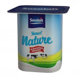 Yaourt brasse nature 100g