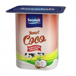 Yaourt brasse sucre coco 100g