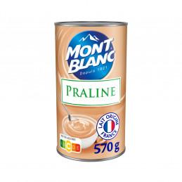 Crème Dessert Praliné 570g