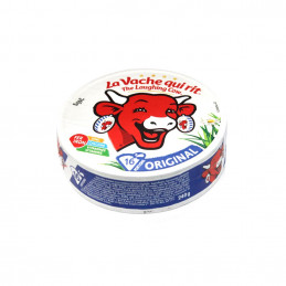 Fromage 16 portions 240g