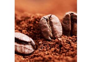 Cafés solubles et Chicore